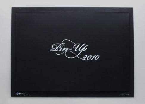 Eizo-pin-up-calendar-2010-2